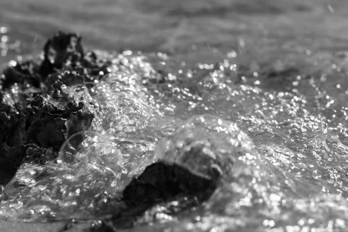black and white splash